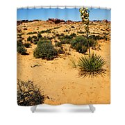 Yucca And Desert Primrose In The Valley Of Fire Shower Curtain