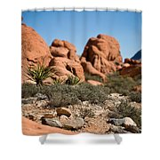 Yucca Shower Curtain