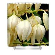 Yucca Flower Shower Curtain
