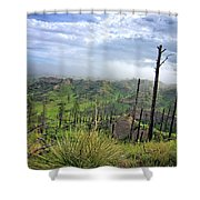 Yucca Hill Shower Curtain