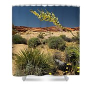 Yucca In The Valley Of Fire Shower Curtain