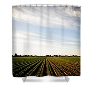Yuma Fields  Shower Curtain