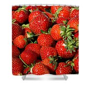 Yummy Fresh Strawberries Shower Curtain