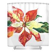 Yupo Poinsettia Shower Curtain