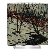 Ywoigne Snow Shower Curtain