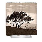 Yyteri Evening Shower Curtain