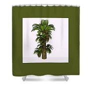 Zamites Tree Shower Curtain