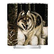 Zane Gray Wolf Shower Curtain