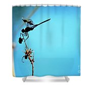 Zeal Shower Curtain