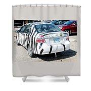 Zebra Car Rear Shower Curtain