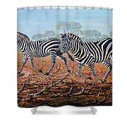 Zebra Crossing Shower Curtain