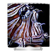 Zebra Fish Shower Curtain