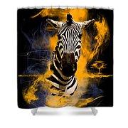 Zebra In Africa Shower Curtain