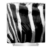 Zebra Lines Shower Curtain