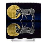 Zebra Moon Shower Curtain
