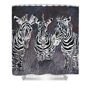 Zebra Oil Painting Shower Curtain