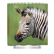 Zebra Portrait Shower Curtain by Trevor Wintle
