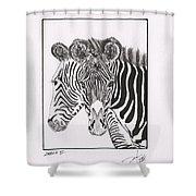 Zebra Series 6 Shower Curtain