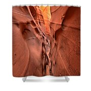 Zebra Slot Canyon Glow Shower Curtain