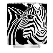 Zebra Works Shower Curtain
