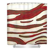 Zebra Zone - Color On White Shower Curtain