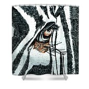 Zebras Eye - Colored Pencil Art  Shower Curtain
