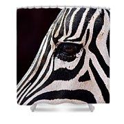 Zebras Eye Shower Curtain