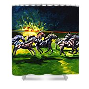 Zebz Shower Curtain