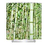 Zen Bamboo Forest Shower Curtain