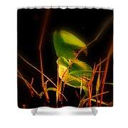 Zen Photography - Sunset Rays Shower Curtain