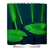 Zen Photography Green  Shower Curtain