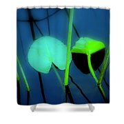 Zen Photography IIi Shower Curtain