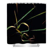 Zen Photography Shower Curtain