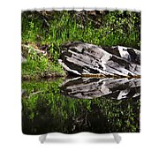 Zen Pool Shower Curtain