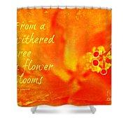 Zen Proverb 3 Shower Curtain