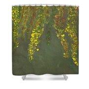 Zen Zone Shower Curtain