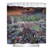 Zeno Canyon Shower Curtain