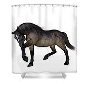 Zephyr Shower Curtain