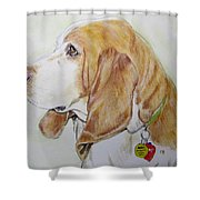 Zepp Shower Curtain