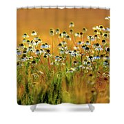 Zest For Life Shower Curtain