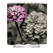 Zinnia Flower Pair Shower Curtain