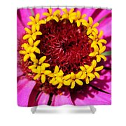 Zinnia Macro Shower Curtain