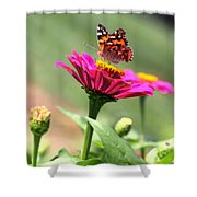 Zinnia Visitor Shower Curtain