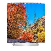 Zion Autumn Colors Shower Curtain