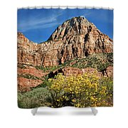 Zion Canyon - Navajo Sandstone Shower Curtain