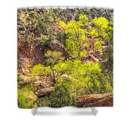 Zion National Park Small Tributary Of The Virgin River Shower Curtain