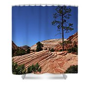 Zion Park Colors And Texture Shower Curtain