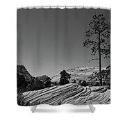 Zion Park Geology Texture Shower Curtain