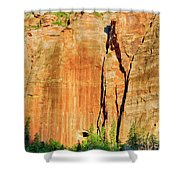 Zion Rock Wall Shower Curtain
