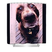 Zoey Shower Curtain
